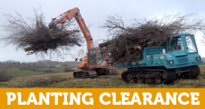 winters_woodchip_planting_clearance_5